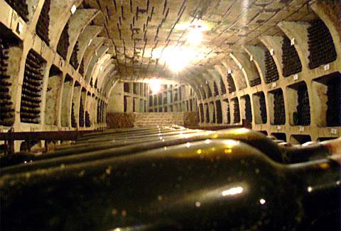 Винный туризм в Молдове. Знаменитые коллекции вин: Milestii Mici