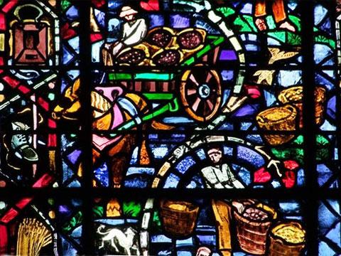 Вино, виноделы, виноделие на витражах. Реймский собор, Шампань, Франция