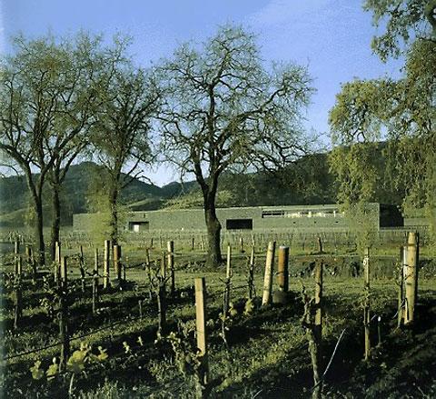 Калифорнийский проект Кристиана Муэкса. Винодельня Dominus