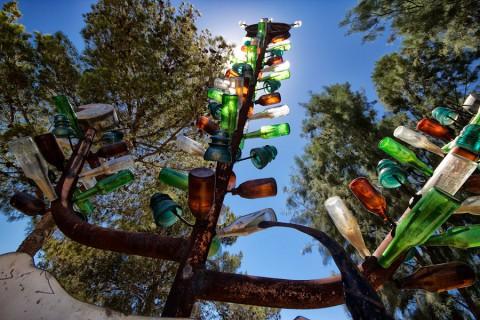 Ранчо бутылочных деревьев